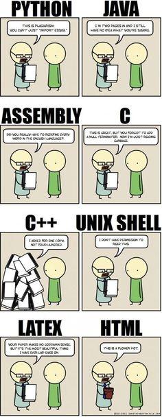 "Programming languages. Lol.. next backend programming request I get, I'm saying,""I only speak flower pot."""