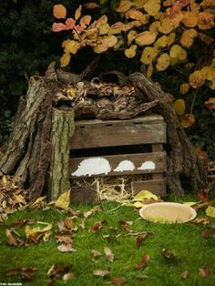 tree stump steps backyard ideas pinterest tree stump gardens and yards. Black Bedroom Furniture Sets. Home Design Ideas
