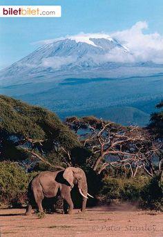 Kilimanjaro, Tanzanya. http://www.biletbilet.com/etiket/35/ucak-bileti
