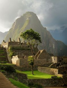 Late Afternoon Sun, Machu Picchu, Peru //