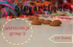 Thema Sinterklaas - werkboekje voor groep 3
