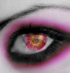 macro photography of eye makeup