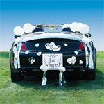 """Wedding Favors & Party Supplies - Favors and Flowers :: Wedding Essentials :: Decorations and Supplies :: """"Just Married"""" Car Decorating Kit"""