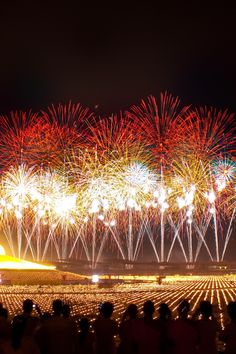 people, lights, firework