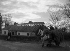Sit back and relax at the Homecoming Traditional Irish Night at Molly Gallivan's cottage. A lovely cottage like this in the picture of Irish Photo Archive. Molly Malone, Grafton Street, Irish Traditions, Sit Back And Relax, Photo Archive, 17th Century, Picture Show, Homecoming, Cottage