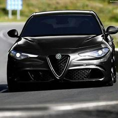 Alfa Romeo's Sports Sedan is a Future Classic: HagertyThe 2017 Alfa Romeo Giulia Quadrifoglio has New Luxury Cars, Small Luxury Cars, Alfa Romeo Quadrifoglio, Alpha Romeo, Alfa Romeo Gta, Alfa Alfa, Alfa Cars, Alfa Romeo Giulia, Classy Cars