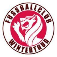 Football Team Logos, Soccer Logo, Football Soccer, Winterthur, Logo Design, Comic, Crests, Lululemon Logo, Illustration
