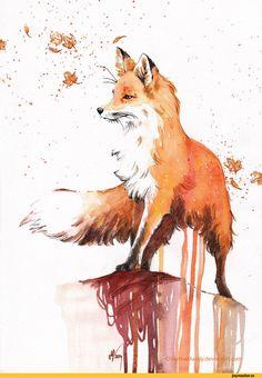 art,красивые картинки,лиса