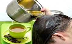 Chá Verde Faz Crescer o Cabelo e Dá volume! (Comprovado Cientificamente)