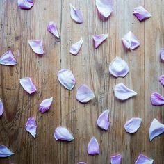 Hace un tiempo escribí un post donde te contaba cómo puedes limpiar tus cristales. Uno de ellos era hacerlo con pétalos de rosa. ¿Lo has probado alguna vez? ¿Sabes de otros métodos que no están nombrados en el post? ¡Cuéntamelo! Y si aún no has leído el post, puedes ir a verlo en el blog, tienes el enlace en la bio 🔝 🔝 . . . #limpiarcristales #energetizarcristales #minerales #cuidatuscristales #petalosderosa #rose #healingstones #healinggemstones #ouiclementineblog #ouiclementine