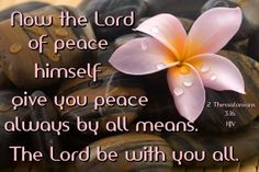 Lord give you peace