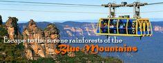 Sydney & Great Barrier Reef 7 Nights and 8 Days : Blue Mountains Tours : LokshaToursSydney.com.au