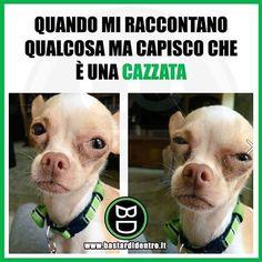 Quando mi raccontano una cazzata! #bastardidentro www.bastardidentro.it