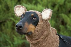 Knitted Dog Snood  warm and cute  with ears by COZYHORSE on Etsy, $48.00