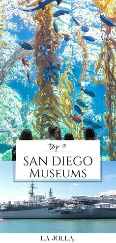 San Diego museums cater to artists, archeologists, surfers, kids, photographers, and a variety of interests. An insider's list of the most visited. Check it out here at La Jolla Mom! La Jolla San Diego, San Diego Zoo, Family Vacation Destinations, Travel Destinations, Most Visited, Surfers, Beach Fun, Museums, Family Travel