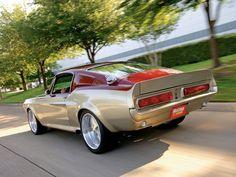 gorgeous custom Mustang