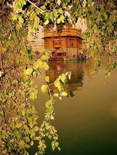 Sikh Quotes, Gurbani Quotes, Fact Quotes, Photo Quotes, Hindi Quotes, Guru Granth Sahib Quotes, Sri Guru Granth Sahib, Sikhism Religion, Guru Nanak Wallpaper
