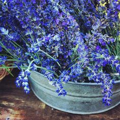 Lavender. Just love it. Such a clean smell.  Photo by isalara