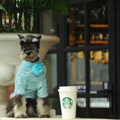 I like coffee too!