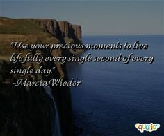 Use your precious moments to live life fully every single second of every single day. -Marcia Wieder