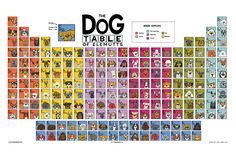 The Dog Table Poster features illustrations of 186 dog breeds. Dogs are organized in a similar layout and structure to the Periodic Table. Link to store in bio. #dogsofpinterest BUY THE DOG TABLE POSTER  http://thedogtable.com
