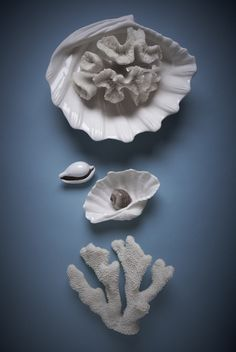 #lunac #porcelain #delmar #sea #coral #shells #ocean Shells, Porcelain, Coral, Brooch, Sea, Beauty, Inspiration, Jewelry, Del Mar