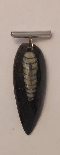 Colgante con fósil de Orthoceras y cañoncillo de plata. Fabricación artesanal.