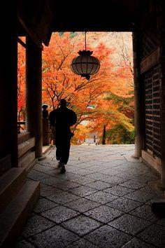 Hase-dera, Nara, Japan 長谷寺 奈良