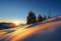 Photograph Golden time by Janez Tolar on 500px