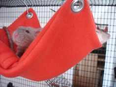 Making rat hammocks (or mouse hammocks)