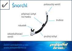 Šnorchlovací systém: Šnorchl