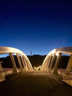 Ponte della musica Roma