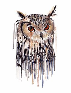 WATERCOLOR OWL PRINT - Unframed  The mischievous owl is one of the most…