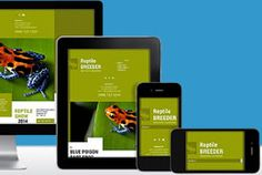 Do you know if your Website is mobile friendly? Have you heard conflicting opinions? Are you feeling the pressure to do something? If so, do you really need to change your Website? With the stampede towards Mobile friendly websites, many Website owners could, needlessly, be investing in a new Website when their existing site was perfectly fine....