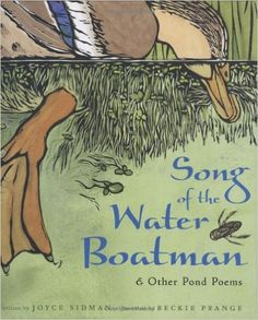 Song of the Water Boatman and Other Pond Poems (Caldecott Honor Book, BCCB Blue Ribbon Nonfiction Book Award): Joyce Sidman, Beckie Prange: 9780618135479: AmazonSmile: Books