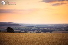 Summer Countryside at Sunset. Available as Wall Art (Canvas, Poster, Mounted Print, Acrylic, Aluminium and Gloss Print: http://thebellsistersart.com/shop/summer-countryside-at-sunset/