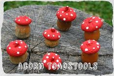 Twig and Toadstool: Acorn Toadstools! After painting the cap separately , turn acorn upside down, sand if nec. to make sit flat and hot glue cap onto the bottom of the acorn Autumn Crafts, Nature Crafts, Diy And Crafts, Crafts For Kids, Acorn Crafts, Crafts With Acorns, Image Deco, Apple Prints, Fairy Garden Accessories