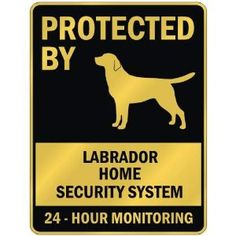 Labrador Home Security Systems - Funny Warning Signs Amazon .com