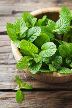 Green fresh mint om the wooden table, selective focus and toned image Peppermint Plants, Peppermint Leaves, Vegetables Photography, Fruit Photography, Fruit And Veg, Fruits And Vegetables, Sauce Barbecue, Spices And Herbs, Organic Herbs