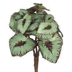 Bloomsbury Market Artificial Begonia Stem (Set of 3)
