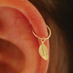 Cartilage Earring, tiny leaf gold hoop, gold cartilage Hoop Earrings, 14K Gold Filled, tiny hoops
