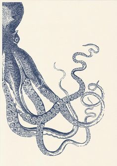 Vintage octopus n 20 sea life print Navy blue by seasideprints