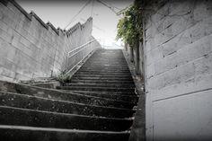 오랜시간이 지나쳐온 낯선 골목길을 좋아하고 골목 끝자락즈음 나타나는 계단도 참 좋아한다. 한칸한칸 오를수록 바람이 풍경이 달라진다 이뻐라... 한걸음한걸음 함께 할 누군가와는 오래된 골목길을 찾아다니며 사진찍어야지~