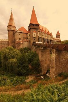 Hunyad Castle - Hunedoara, Romania - not exactly nature. But I am also working on a spin off series that has the kiddos going to an academy. I like the looks of this castle with nature surrounding it.