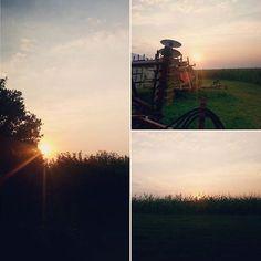 Good Morning from the #Nebraska #farm.  #sunrise #cornfield #serenity #tractor