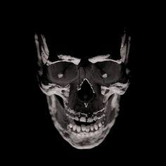Skull Skull Reference, Light Study, Gothic Aesthetic, Skull Island, Pen Art, Dark Fantasy Art, Skull And Bones, Skull Art, Black And Grey Tattoos