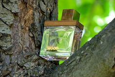 Perfumy Dsquared She Wood