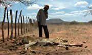 Globo Rural - Ano de 2012 registrou uma das piores secas vividas pelo Nordeste | globo.tv