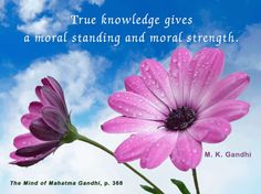 True knowledge gives a moral standing and moral strength.  ~ Gandhi