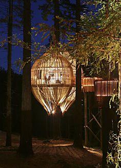 redwoods treehouse restaurant, nz